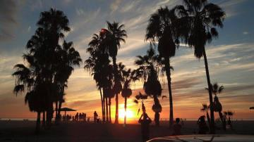Beautiful Venice Beach sunset