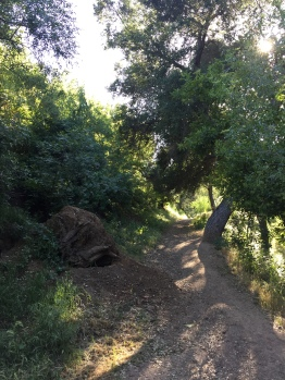 Glendale California Hiking Trail