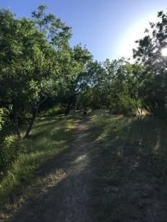 Hiking Glendale CA